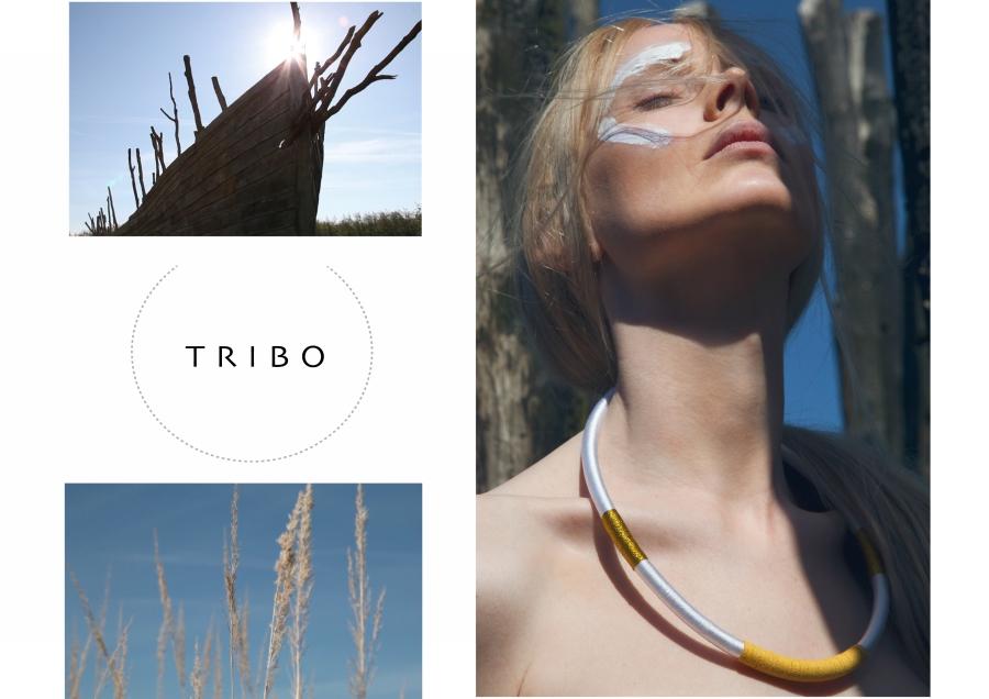 heimasida-tribo-1-prufa-stor-mynd